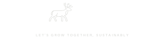 The Nordic Marketer | Helping introvert entrepreneurs and solopreneurs grow their business sustainably, with content and a Nordic twist